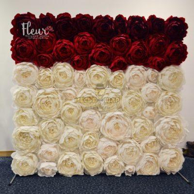Фото-зона - Стена из бордово-белых роз