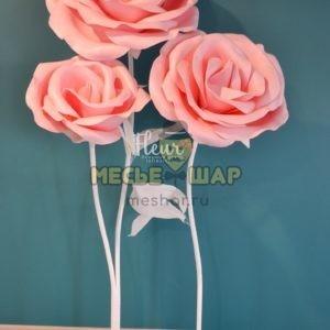Набор розовых ростовых роз