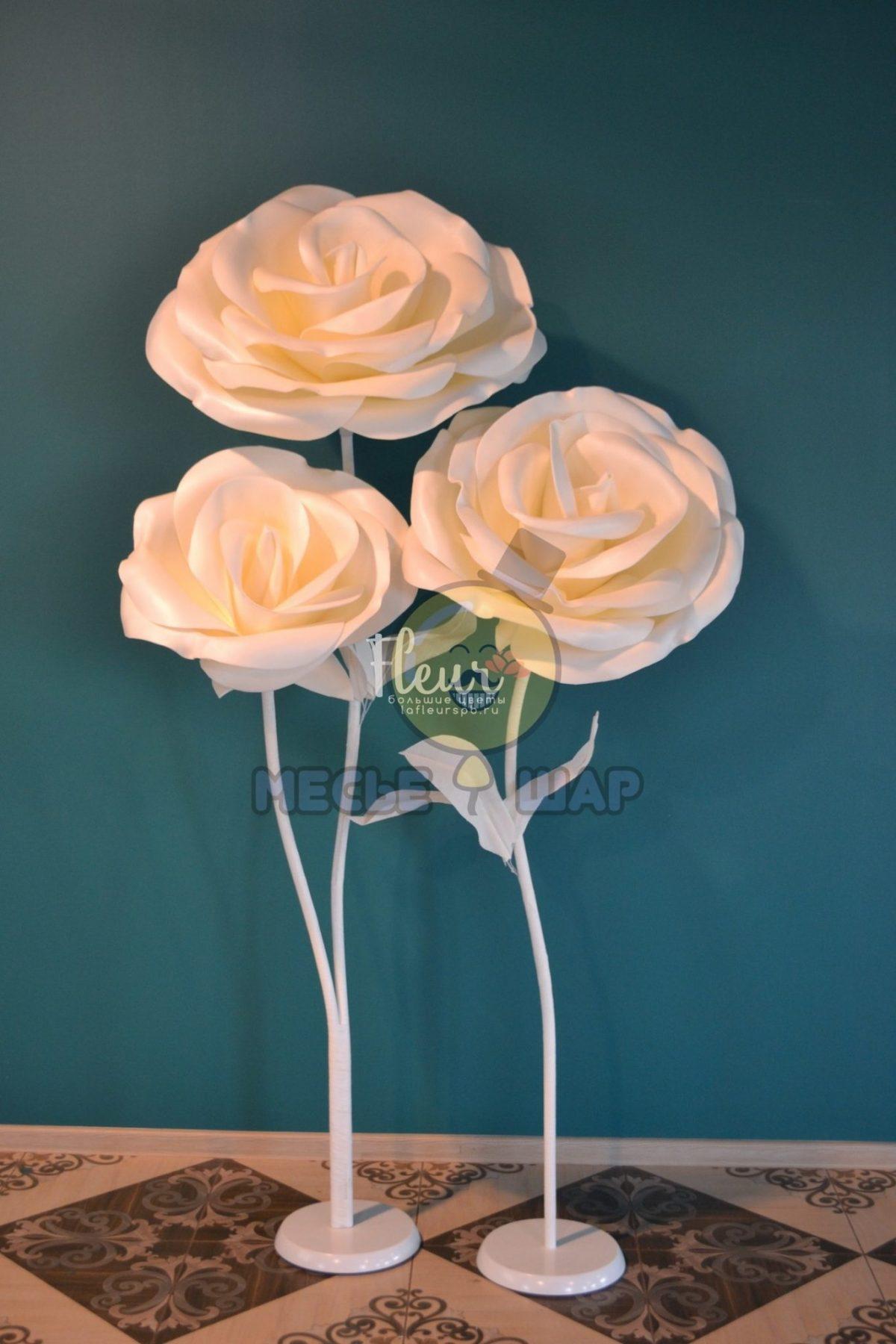 Набор белых ростовых роз