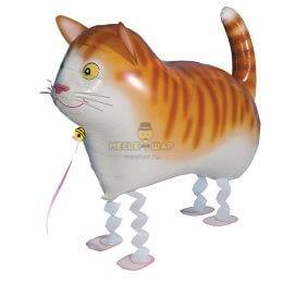 Ходячий шар Котик