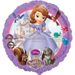 Фольгированный шар София в круге