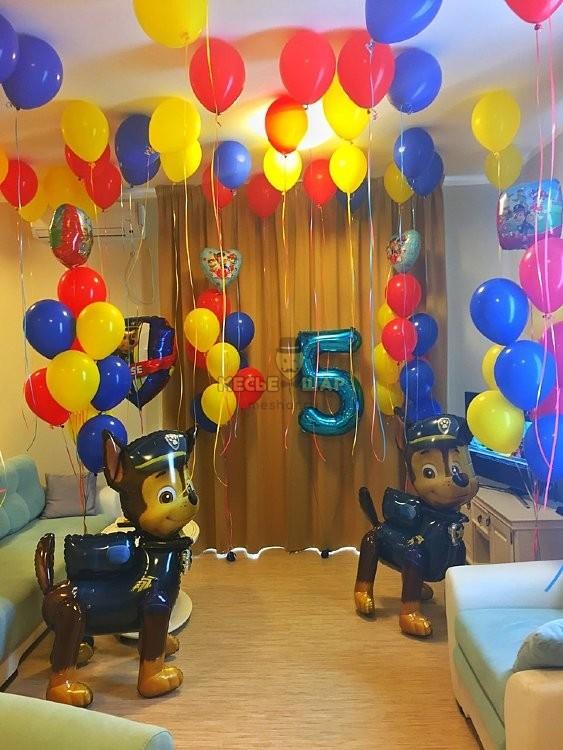 Гонщик на Дне рождения из шариков