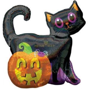 Черный кот и тыква 90см