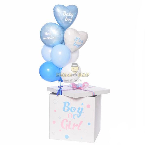Гендерная коробка 2
