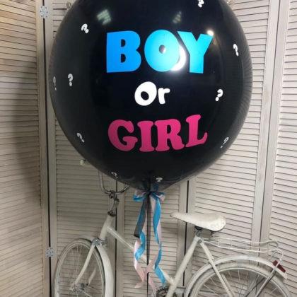 Гендерный шар
