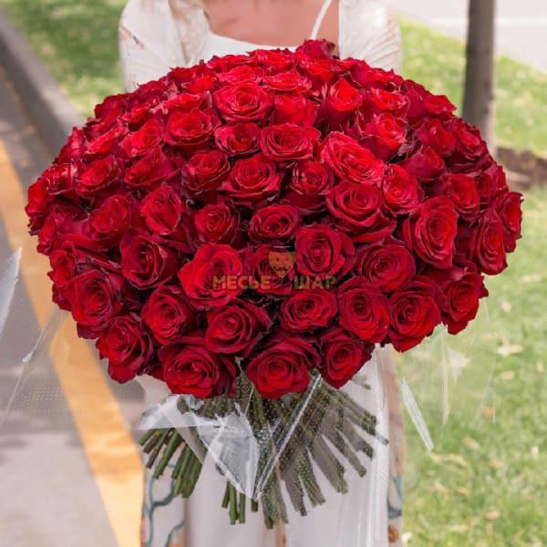Букет красных роз 101 шт Эквадор 50 см