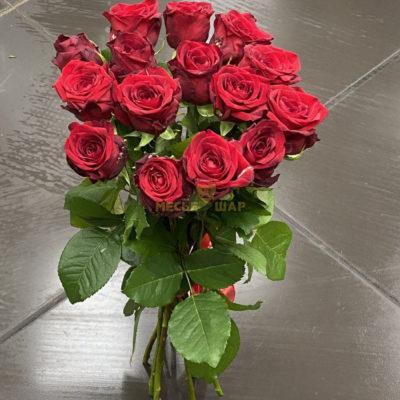 Букет красных роз 15 шт Россия
