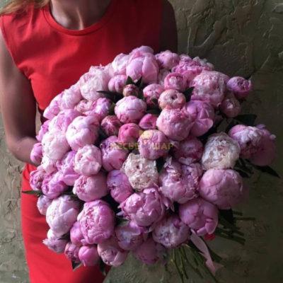 Букет 75 розовых пионов