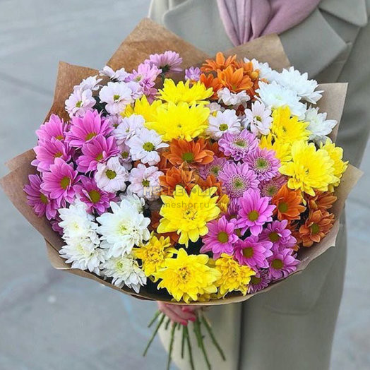 Букет разноцветных хризантем микс