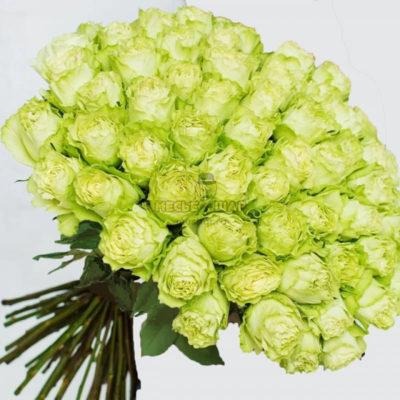 Букет зеленых роз