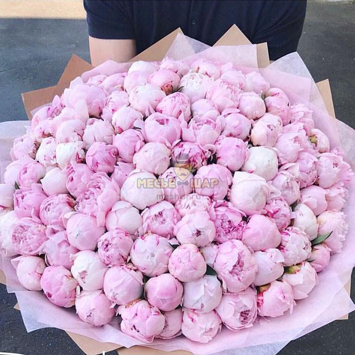 Огромный букет 101 розовый пион