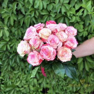 Букет бело-розовых роз 15 шт Эквадор 50 см
