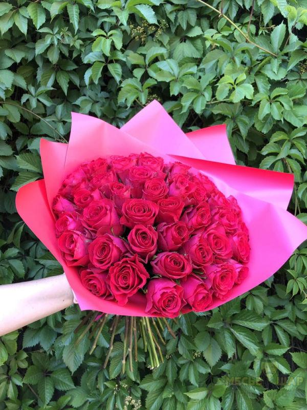 Букет красных роз 51 шт Кения Фуксия 50 см