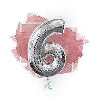 Шар-цифра-6